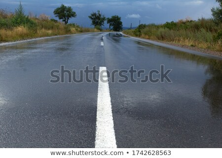 Empty road and landscape after heavy storm Stock photo © CaptureLight