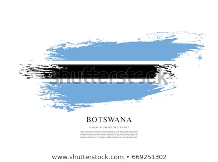 Botswana vlag grunge afrikaanse land afrika Stockfoto © Bigalbaloo