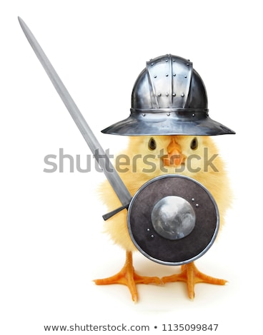 Stock photo: Funny knight isolated on the white background