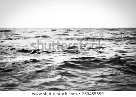 coast White Sea . stock photo © fanfo