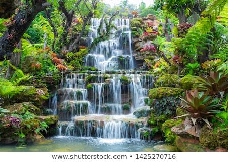 Vízesés fa gyönyörű erdő tavasz hosszú expozíció Stock fotó © artfotoss