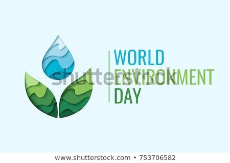 Környezetbarát kék vektor ikon terv levél Stock fotó © rizwanali3d