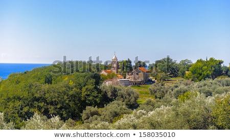 Eski manastır ortaçağ ortodoks köy tarihsel Stok fotoğraf © Steffus