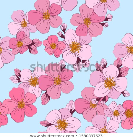 blossoms against a blue background eps 10 stock photo © beholdereye