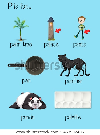 Flashcard letter P is for panther Stock photo © bluering