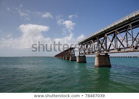 plaj · tropikal · Florida · gün · palmiye · ağaçları · ağaç - stok fotoğraf © lunamarina
