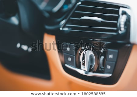 Detail of Illuminated Headlight and Grille of Car Stock photo © kyolshin