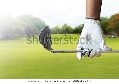 Foto stock: Jogador · de · golfe · pôr · do · sol · ilustração · homem · verde · clube