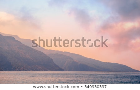 rose quartz and serenity Stock photo © blackmoon979