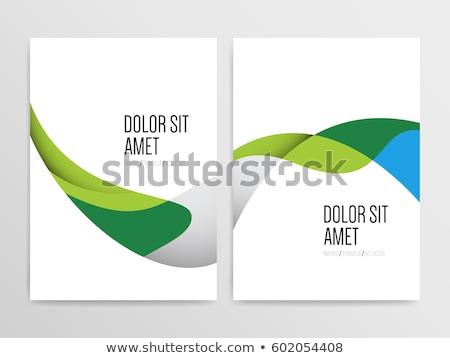 бизнеса ежегодный докладе брошюра дизайн шаблона серый Сток-фото © SArts