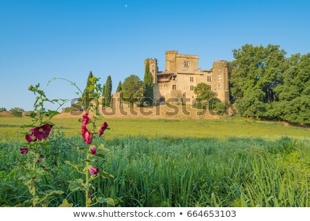 Middeleeuwse kasteel Frankrijk eerste winter toren Stockfoto © amok