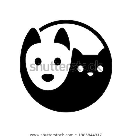 Stockfoto: Yin · yang · symbool · kat · hond · vector · logo-ontwerp