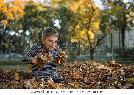 Family holding a bunch of leaves in park Stock photo © IS2