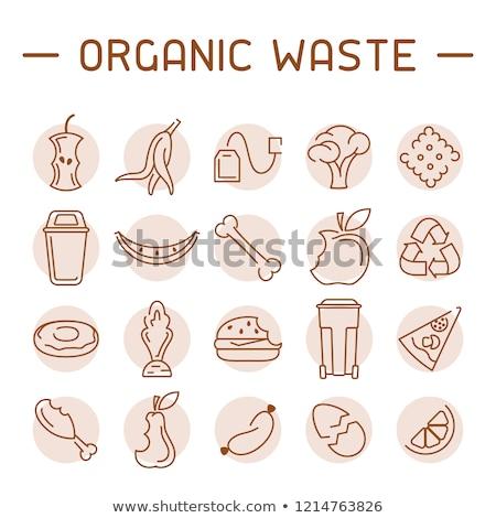 Ordures déchets ensemble organique verre métal Photo stock © robuart