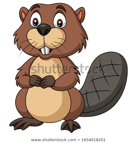 Smiling Little Beaver Stock photo © cthoman