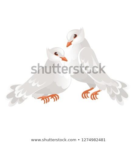 twee · bruiloft · geïsoleerd · witte · symbool - stockfoto © Lady-Luck