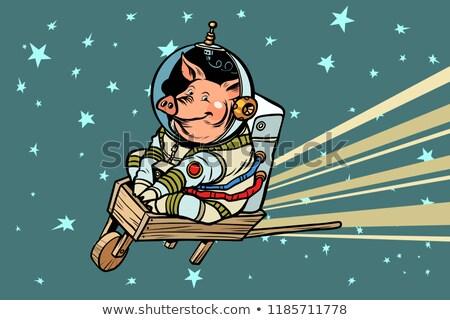 Porco astronauta carrinho de mão cômico desenho animado Foto stock © rogistok