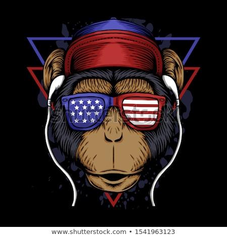 愛国的な 猿 米国 帽子 アメリカンフラグ ストックフォト © hittoon