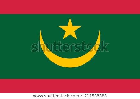Mauritania flag, vector illustration Stock photo © butenkow