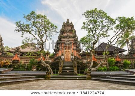 Tapınak bali ada Endonezya su Bina Stok fotoğraf © galitskaya