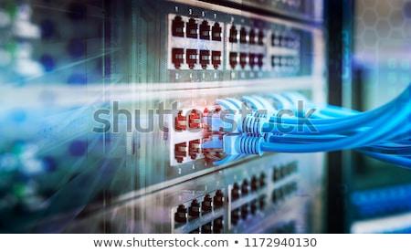 Stok fotoğraf: Ağ · panel · kablolar · içinde · dolap