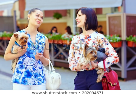 Stock photo: Young Girl Talking Dog For Walk
