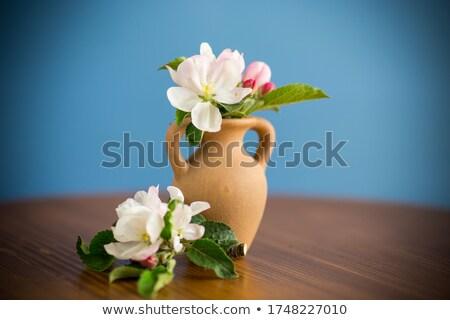 virágok · fából · készült · váza · piros · friss · virág - stock fotó © smithore