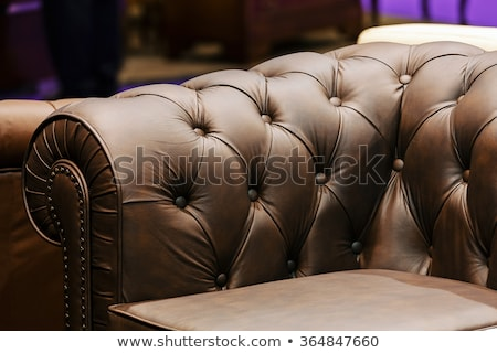 Black sofa and leather chair on white Stock photo © ozaiachin