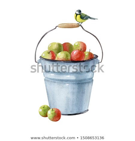 Basket with apples and herbs Stock photo © brebca