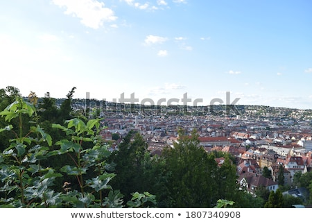 Scenic rooftop view of Stuttgart, Germany Stock photo © juniart