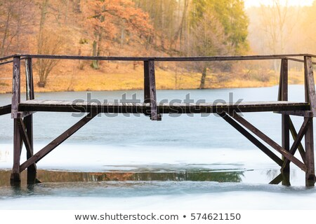 old wooden bridge on a frozen lake Stock photo © ultrapro