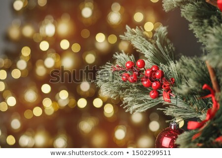 Christmas achtergrond Rood aanwezig verrassing Stockfoto © dariazu