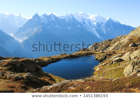 mont blanc   aiguille du miidi and mer de glace stock photo © antonio-s