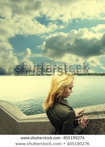 gyönyörű · vízpart · lakosztály · óceán · víz · terv - stock fotó © photography33