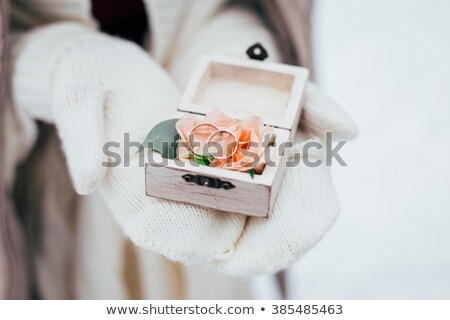 frosted wedding rings Stock photo © prill