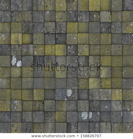 mosaic tile worn old wall floor with spurs mold Stock photo © Melvin07