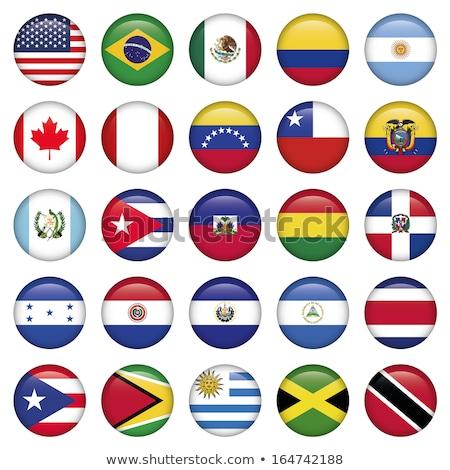 Gomb zászló Guyana fém keret utazás Stock fotó © MikhailMishchenko