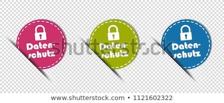 Korumalı pembe vektör düğme ikon dizayn Stok fotoğraf © rizwanali3d