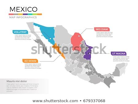 地図 メキシコ ピンク 紫色 ベクトル 孤立した ストックフォト © rbiedermann