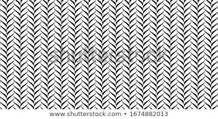 black cordage - on white Stock photo © ozaiachin