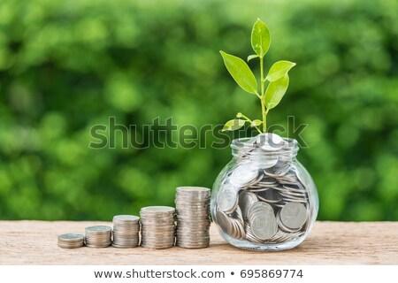 aposentadoria · investimento · conselho · financeiro · poupança - foto stock © lightsource