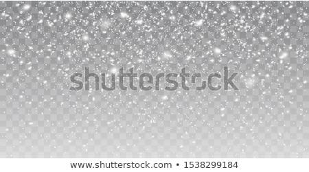 Kar beyaz gümüş Stok fotoğraf © opicobello