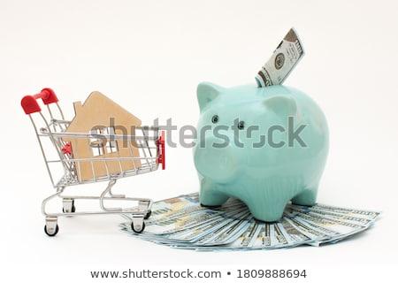 Model huis spaarvarken geld financieren doel Stockfoto © IS2