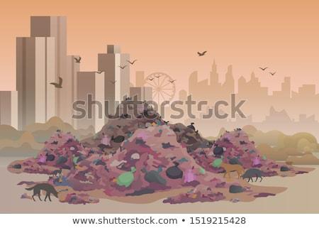 Ville enterré entreprise domestique déchets terre Photo stock © papa1266