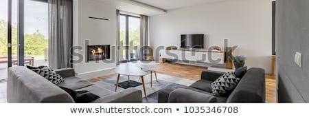 Ruim woonkamer licht grijs muren groot Stockfoto © iriana88w