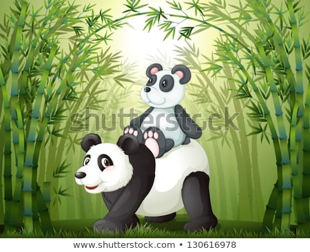 állatok bambusz jelenet illusztráció fű levél Stock fotó © colematt