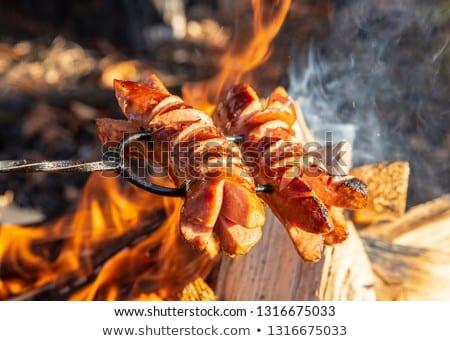 ételt készít tábortűz vad kempingezés pihen természet Stock fotó © olira