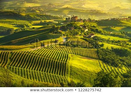 Grinzane Cavour Castle, Piedmont, Italy Stock photo © phbcz