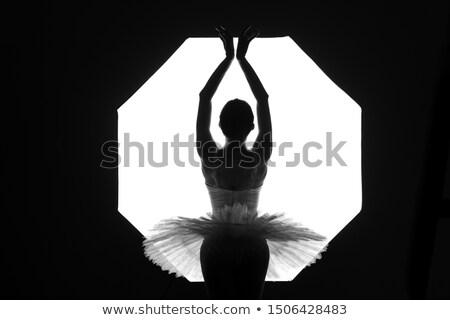 Balé gracioso bailarina branco luz atuação Foto stock © gromovataya