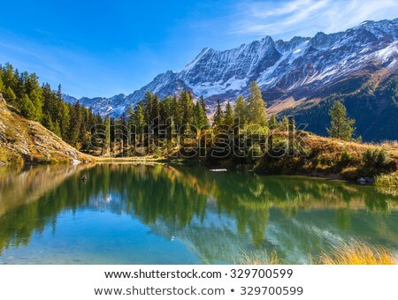 Beautiful mountain view on autum day Stock photo © Nejron